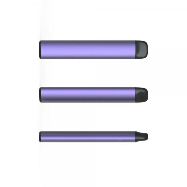 Electronic Vaporizer Wholesale Disposable Vape Pen with Fruit Flavor E-Liquid Pop