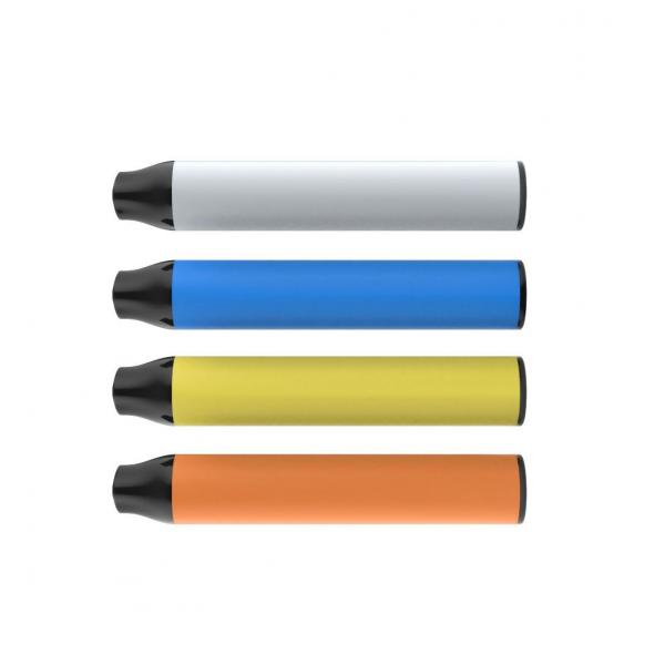 Disposable Electronic Cigarette OEM Vape Pen Glass Cbd Oil Atomizer